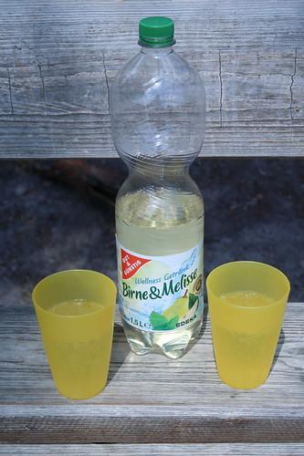 Wellness Getränk Birne & Melisse