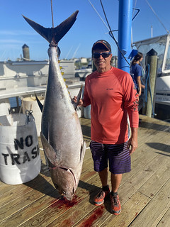 Photo of a man on a dock with a large tuna hoisted next to him