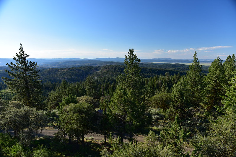 View from Fall Mountain Lookout