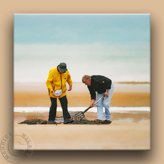Digging for Bait