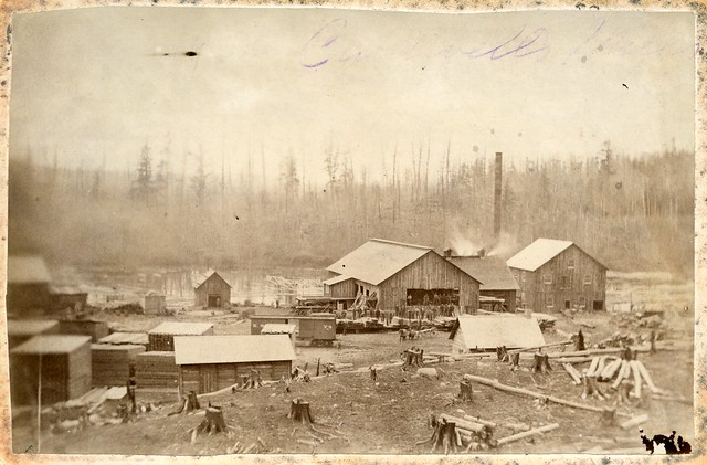 Clyde Forks, Ontario, sawmill (aka Caldwell's Mill) c.1890