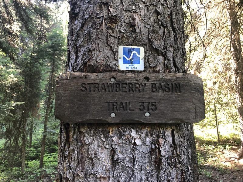 Strawberry Basin Trail