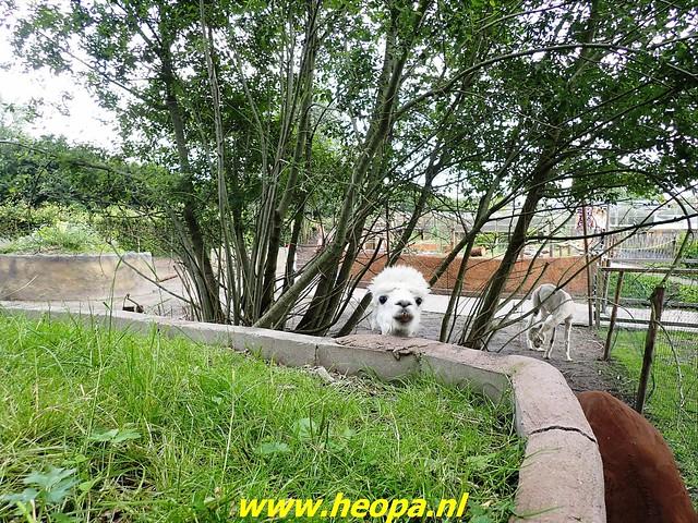 2021-07-02   Almere 3 daagse    van Heopa  3e dag  (36)