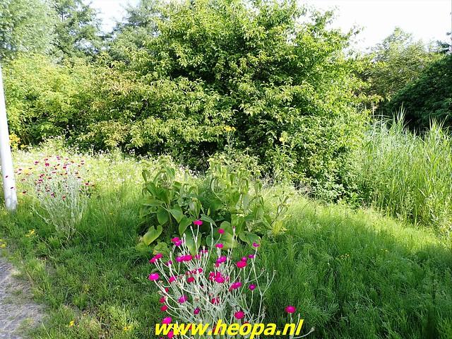 2021-07-02    Almere 3 daagse   van Heopa   2e dag (5)