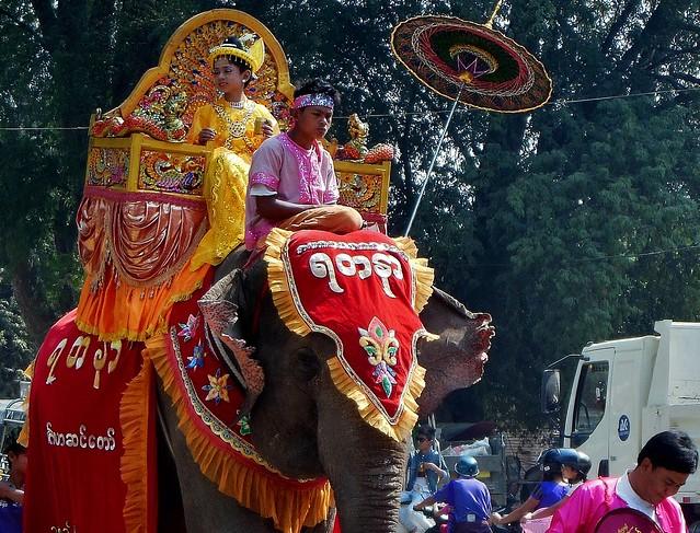 MYANMAR , Burma,  -  Prozession bei Bagan- Nyaung-U. ,Novize mit Elefant  bei der Shinbyu-Zeremonie , 78407/13827