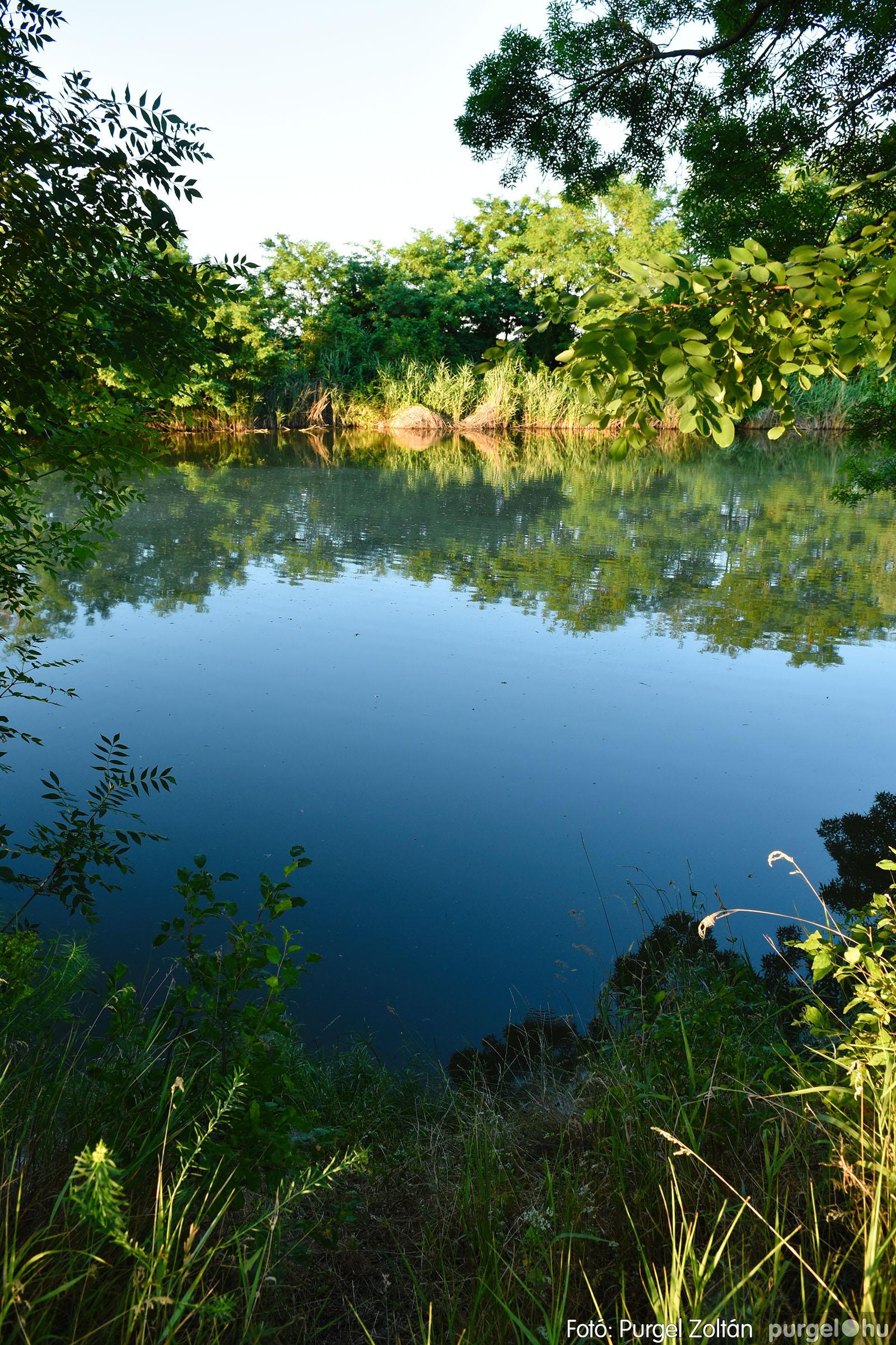 2021.07.06. 021 A fahíd és a Lándor környéke - Fotó:PURGEL ZOLTÁN© DSC_8033q.jpg