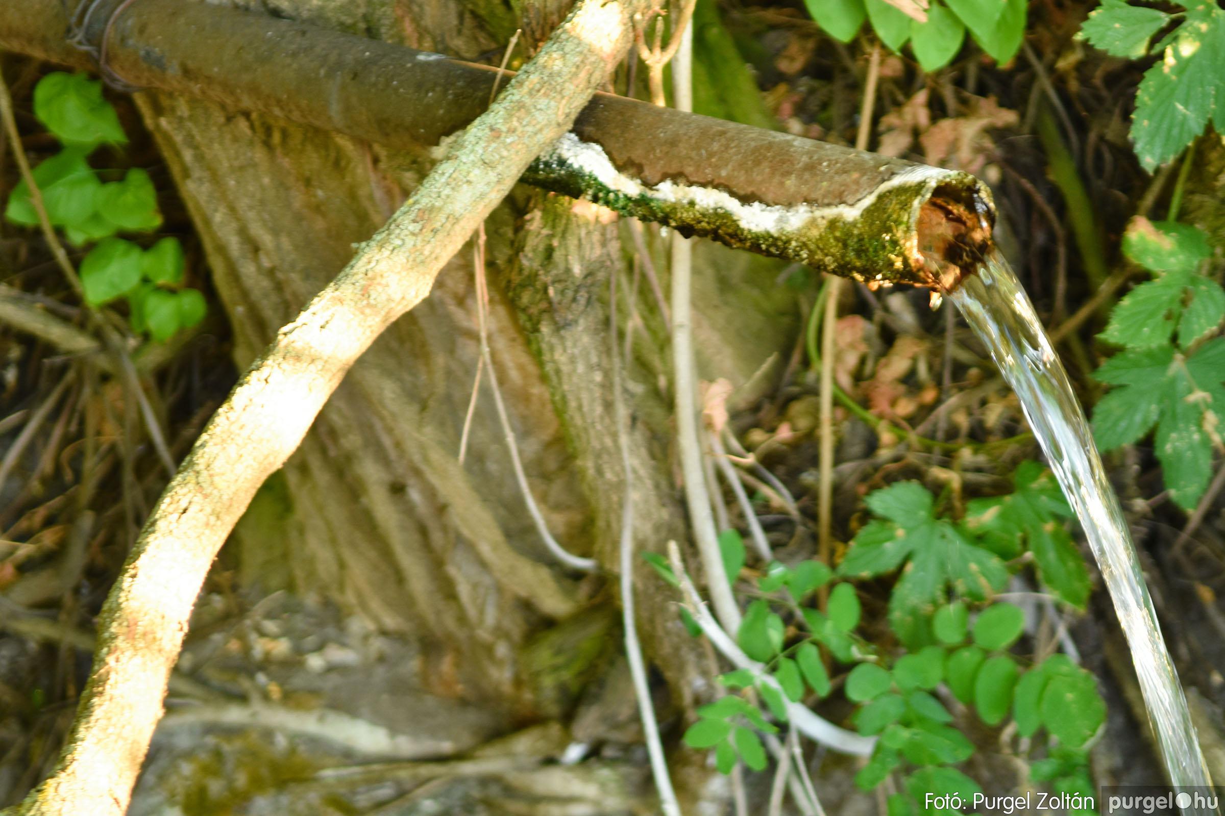 2021.07.06. 018 A fahíd és a Lándor környéke - Fotó:PURGEL ZOLTÁN© DSC_8022q.jpg