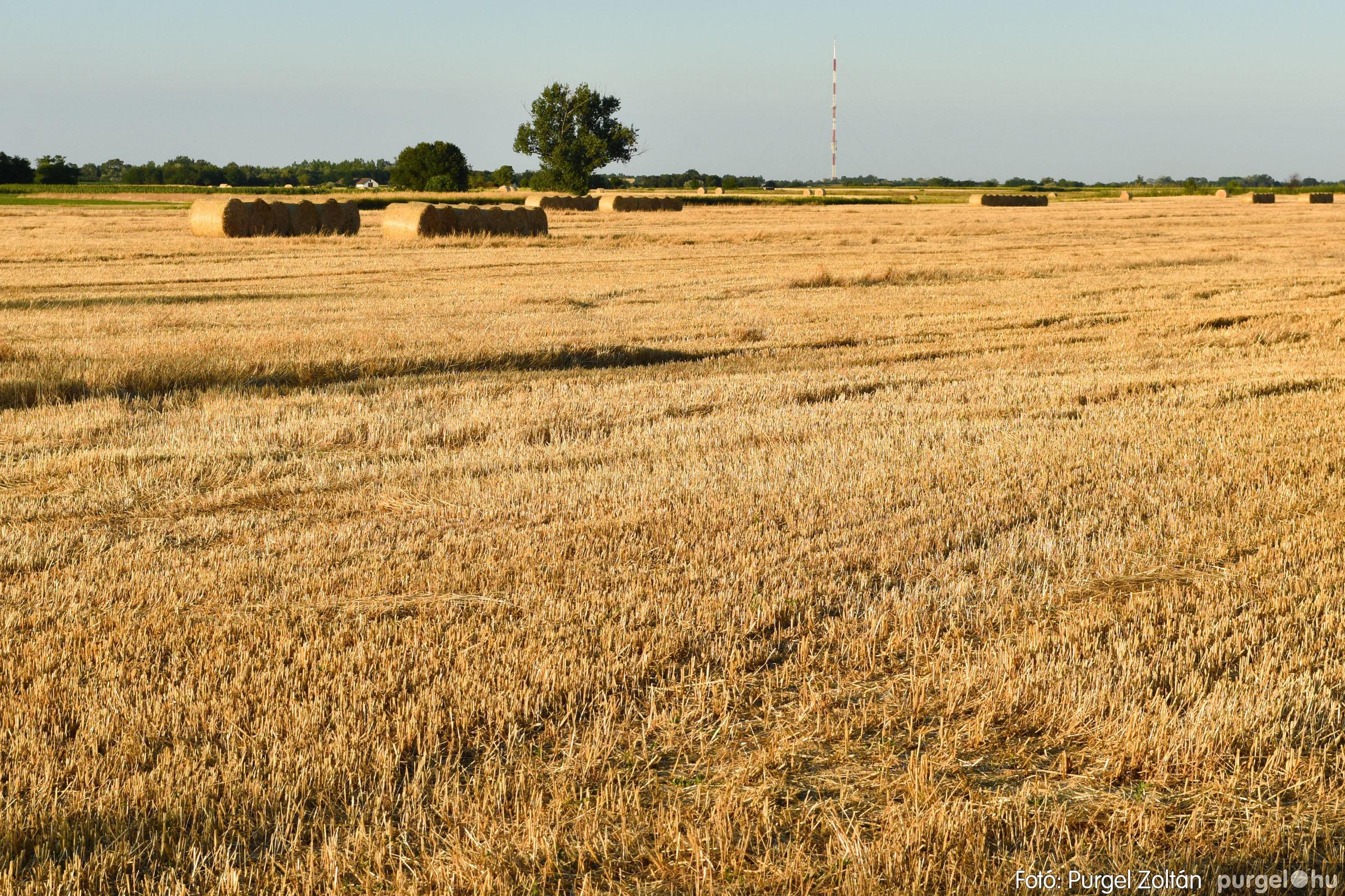 2021.07.06. 015 A fahíd és a Lándor környéke - Fotó:PURGEL ZOLTÁN© DSC_8019q.jpg