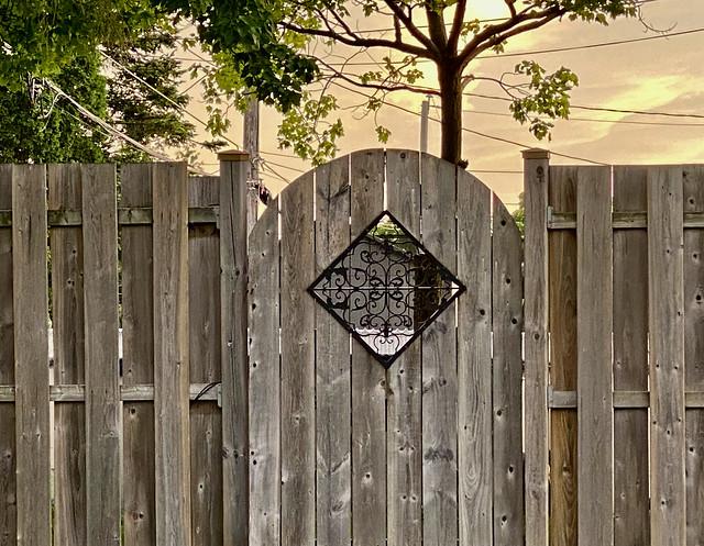 Peek a Boo Garden Gate ...
