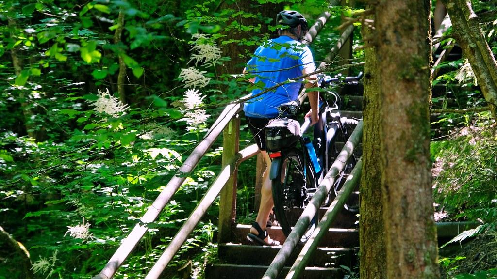 Pedelec auf Wanderwegtreppe