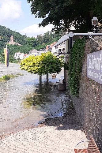 Juni 2021 ... Neckar-Hochwasser ... Neckarsteinach ... Brigitte Stolle
