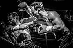 Black and White Boxing - Boxers fighting
