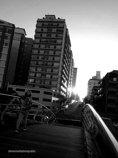 Puente al sol