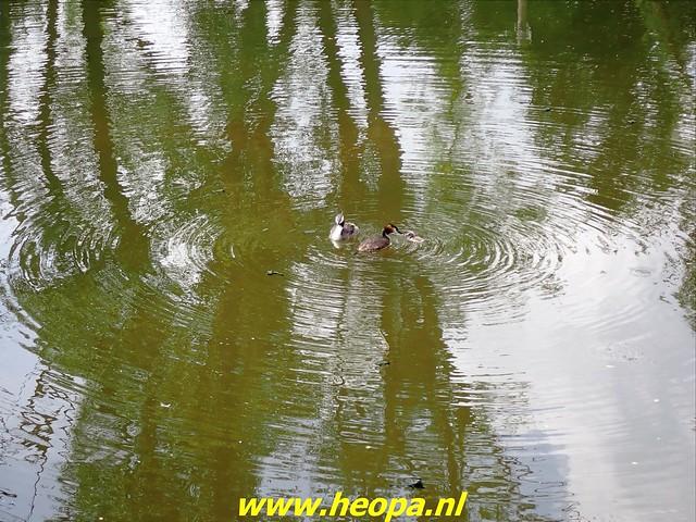 2021-07-02   Almere 3 daagse    van Heopa  3e dag  (25)