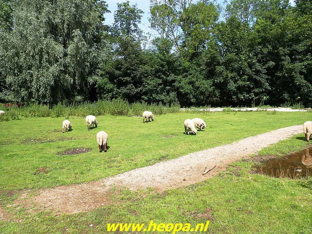 2021-07-02   Almere 3 daagse    van Heopa  3e dag  (21)