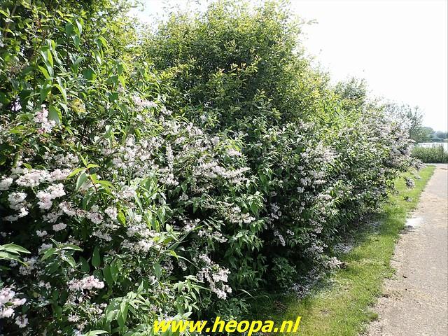 2021-07-02   Almere 3 daagse    van Heopa  3e dag  (16)