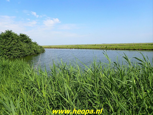 2021-07-02    Almere 3 daagse   van Heopa   2e dag (20)