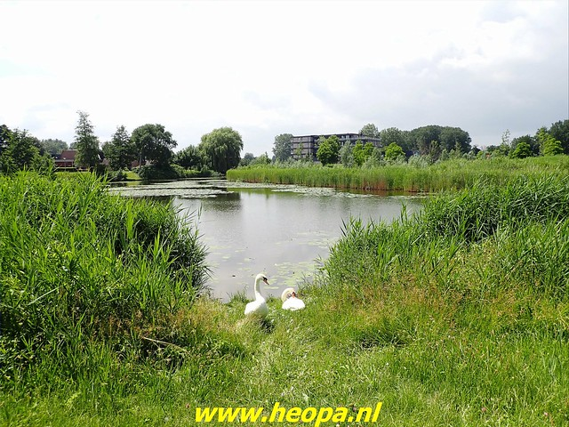 2021-07-02     Almere 3 daagse   van Heopa  1e dag   (2)