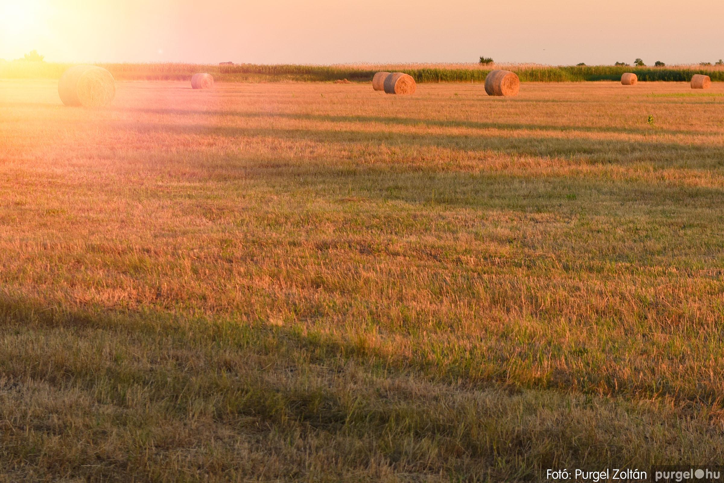 2021.07.06. 031 A fahíd és a Lándor környéke - Fotó:PURGEL ZOLTÁN© DSC_8052q.jpg
