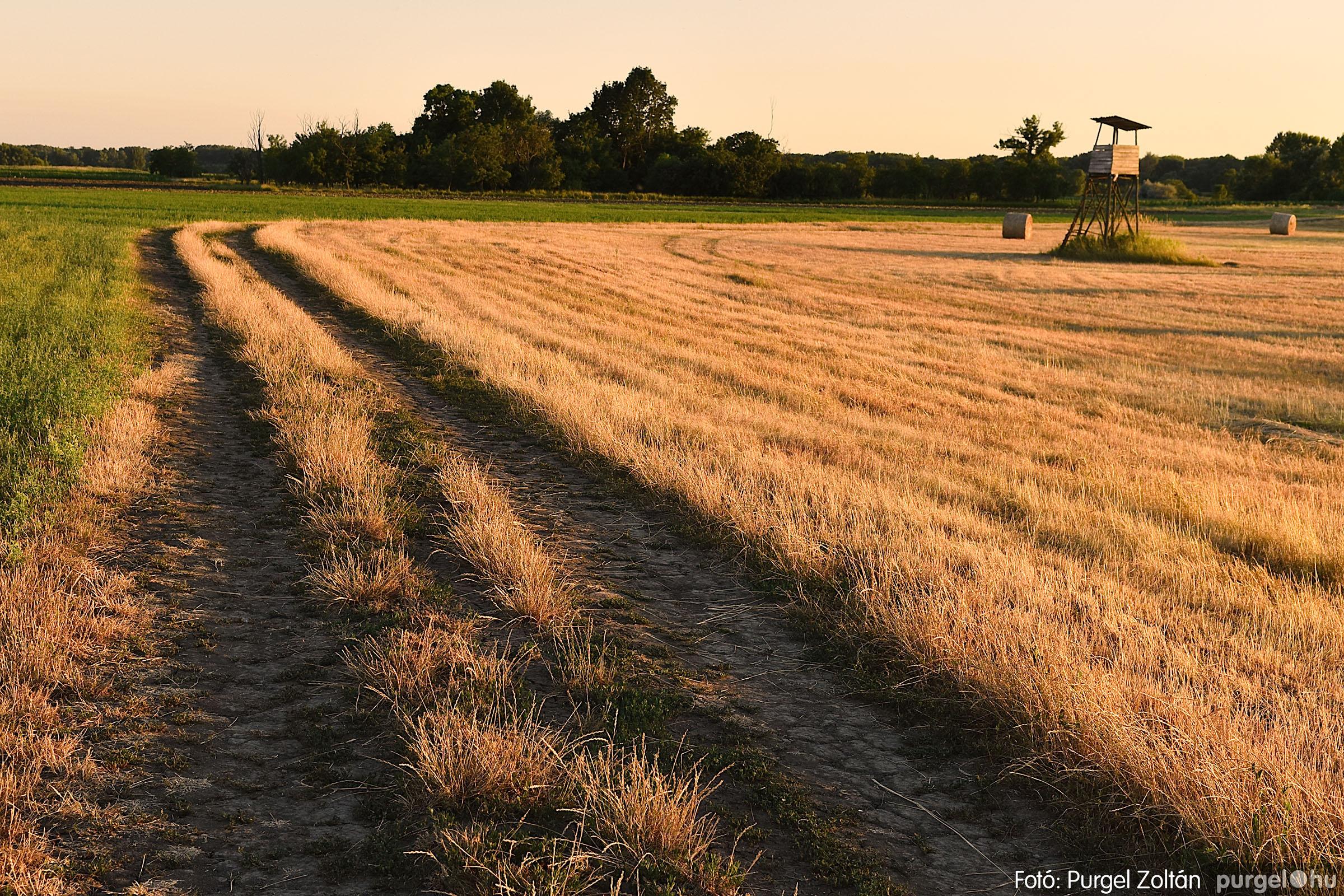 2021.07.06. 024 A fahíd és a Lándor környéke - Fotó:PURGEL ZOLTÁN© DSC_8039q.jpg