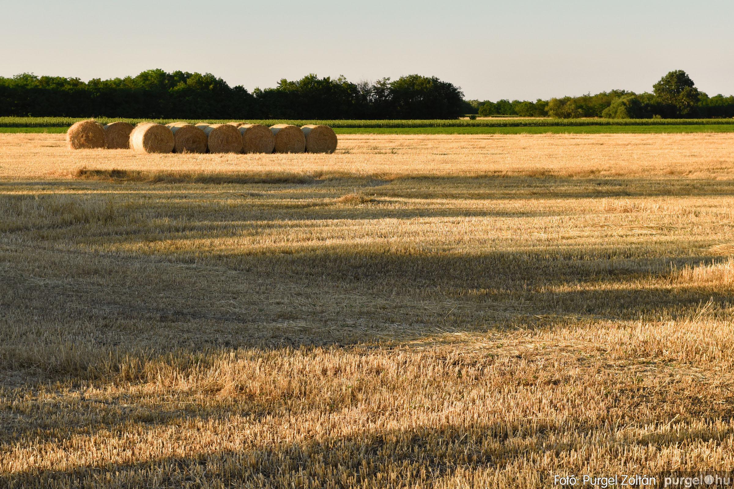 2021.07.06. 014 A fahíd és a Lándor környéke - Fotó:PURGEL ZOLTÁN© DSC_8018q.jpg
