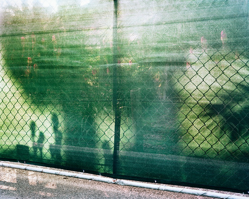 We Don't Speak the Same Language 2. From Artist Spotlight: Jasmine Zhang