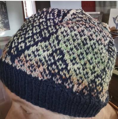 Paulette (@psknitting50) finished this Sambucus pattern by Kate Davies (Milarrochy Heids).