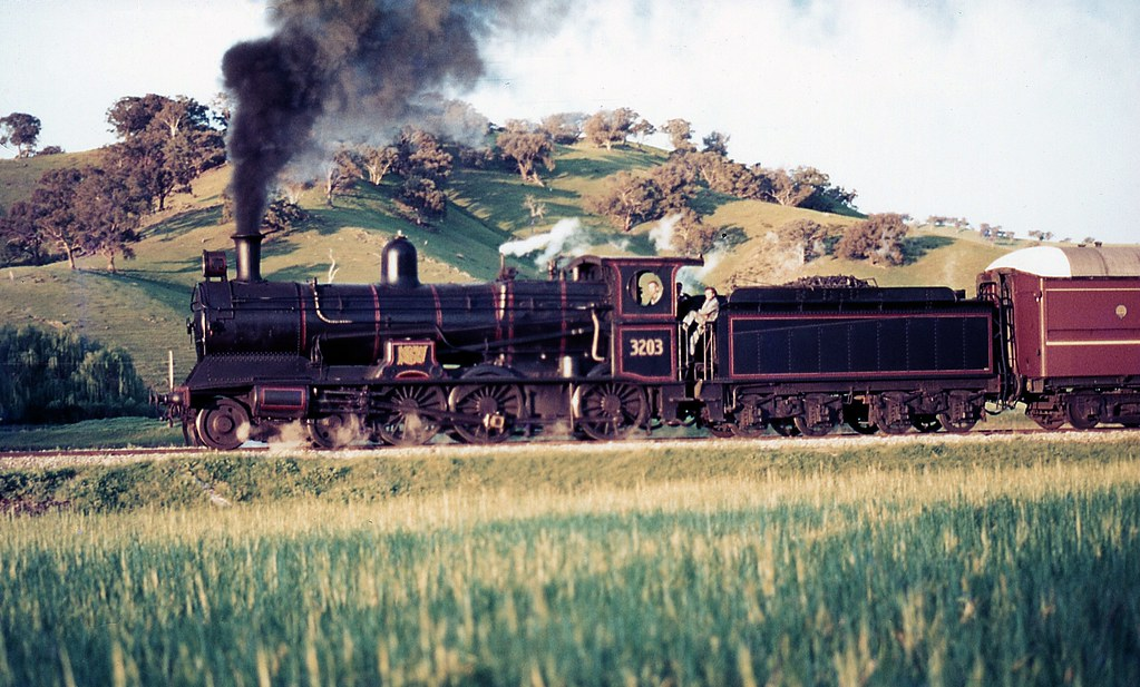 3203 on Tour Train, NSW by dunedoo