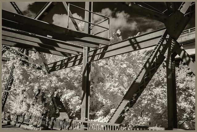 Bridges IR #8 2021; Old RR Bridge & Trees