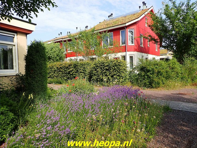 2021-07-02    Almere 3 daagse   van Heopa   2e dag (4)