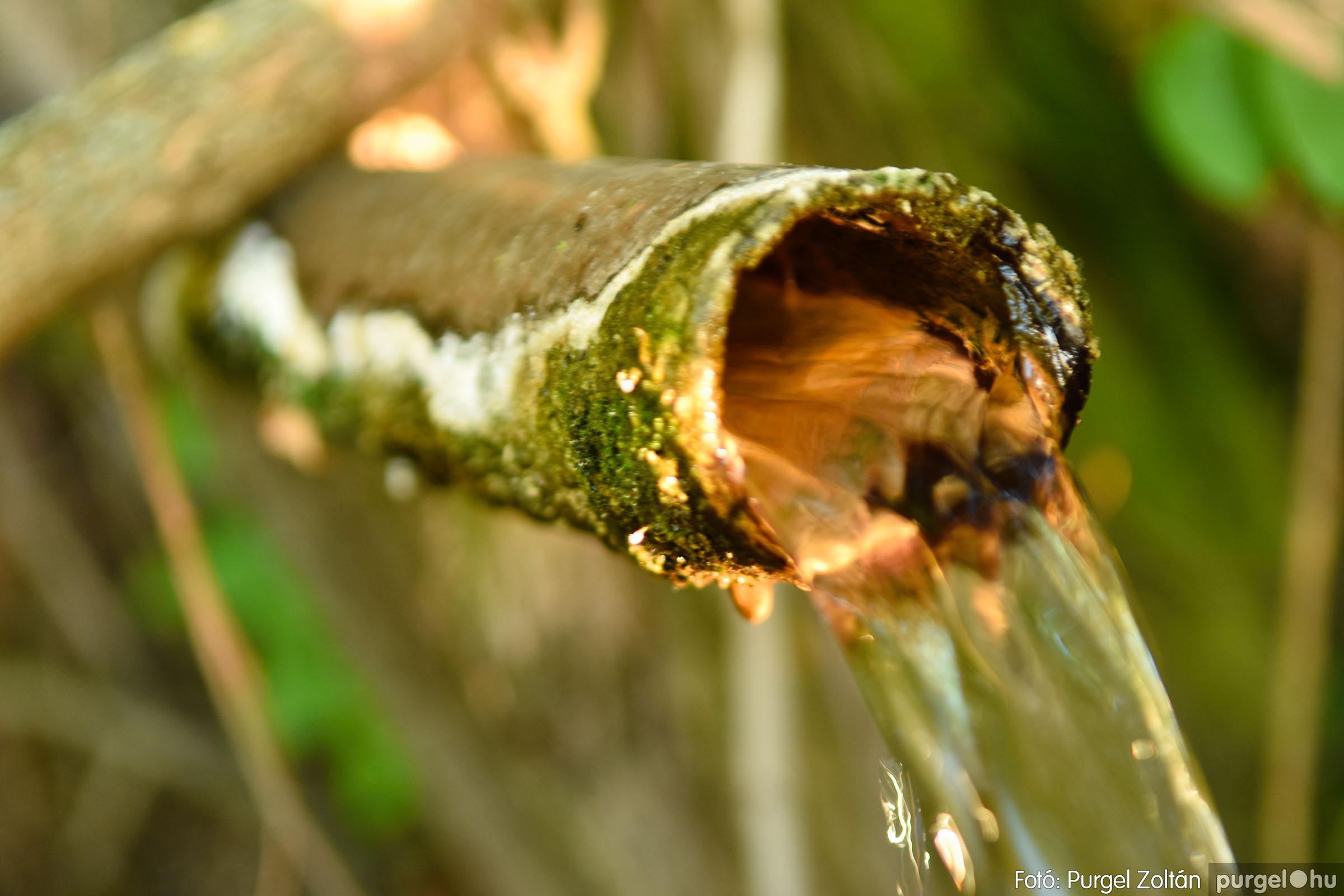 2021.07.06. 019 A fahíd és a Lándor környéke - Fotó:PURGEL ZOLTÁN© DSC_8024q.jpg