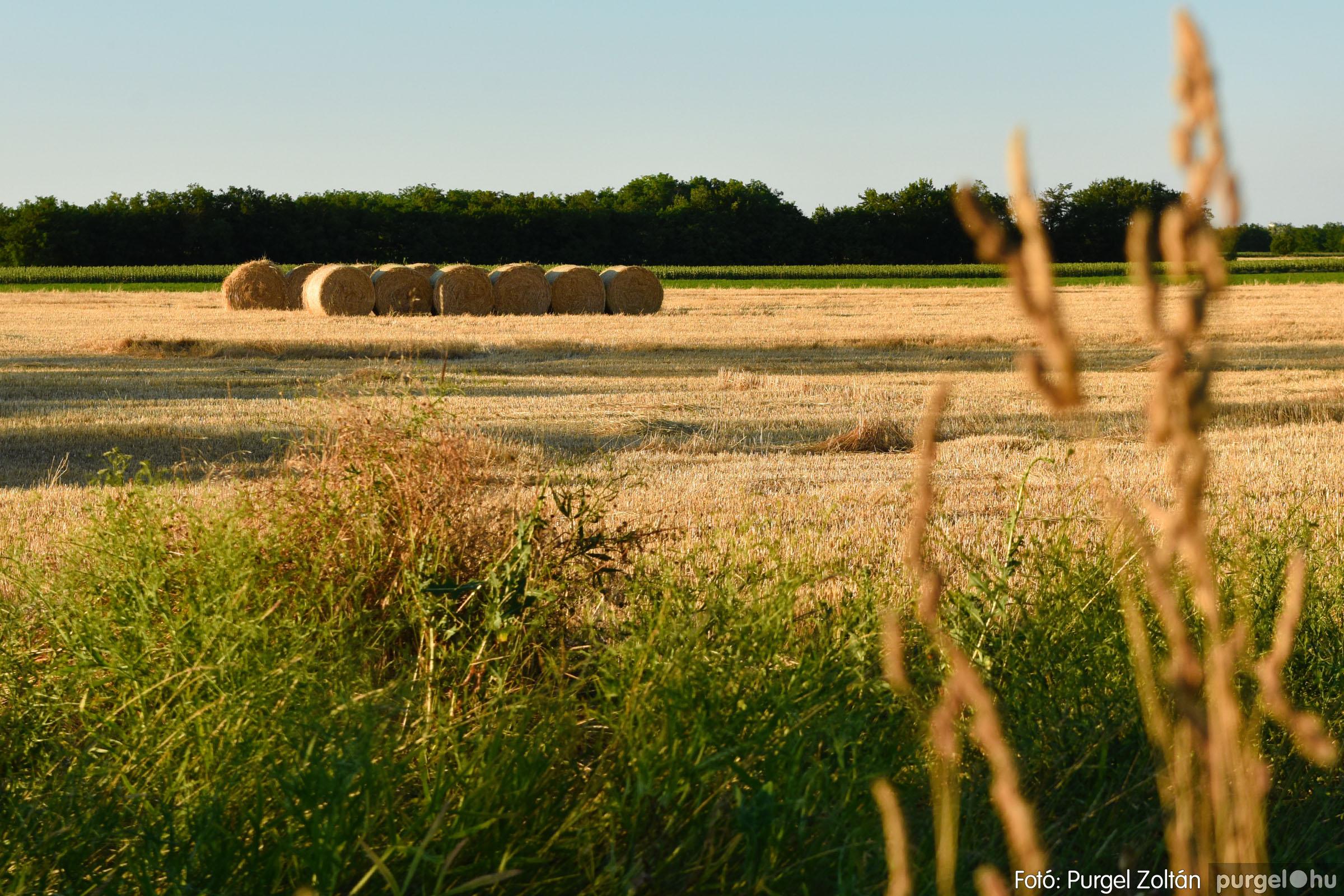 2021.07.06. 016 A fahíd és a Lándor környéke - Fotó:PURGEL ZOLTÁN© DSC_8020q.jpg