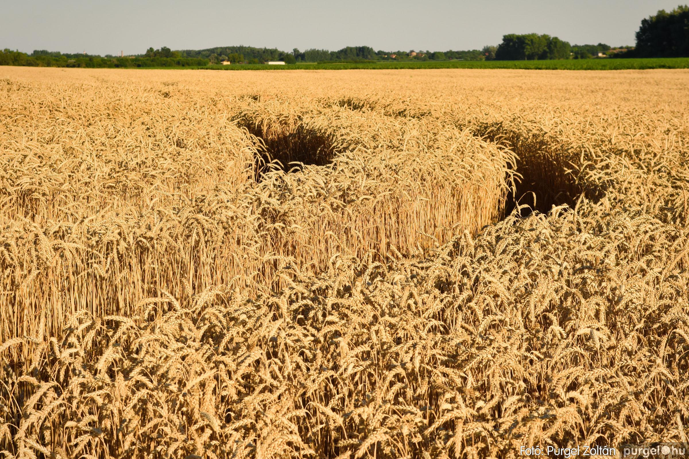 2021.07.06. 003 A fahíd és a Lándor környéke - Fotó:PURGEL ZOLTÁN© DSC_8003q.jpg