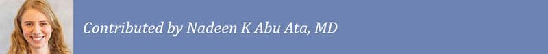 Abu Ata template