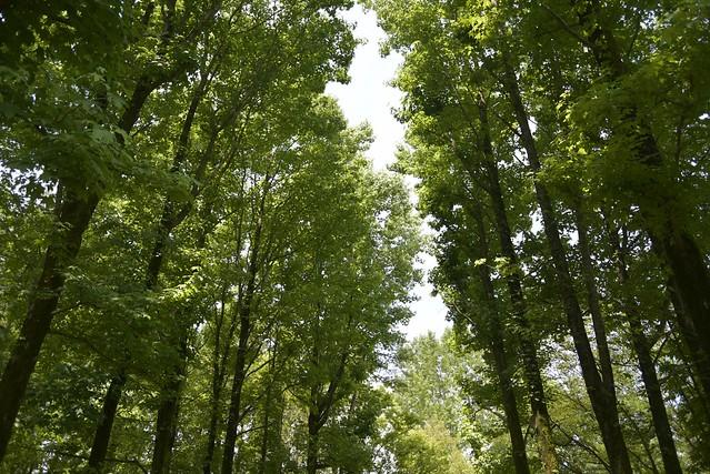 金沢北部公園
