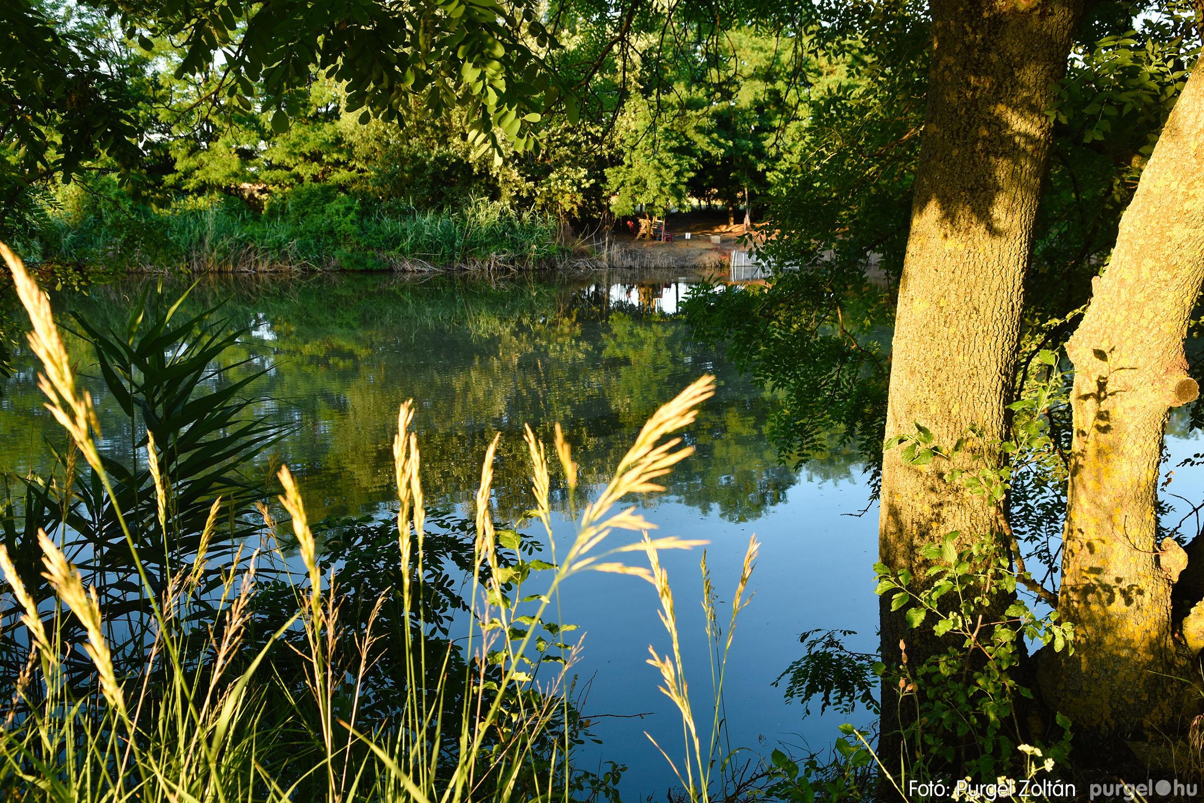 2021.07.06. 022 A fahíd és a Lándor környéke - Fotó:PURGEL ZOLTÁN© DSC_8036q.jpg