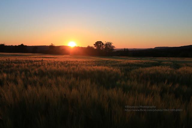 Hohengehren, Steinenbach, sunset