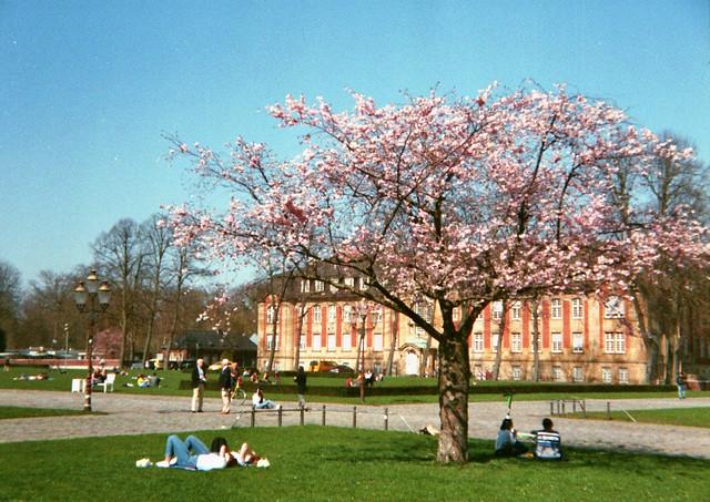 Universitätsgebäude am Schloßgarten - I shot film