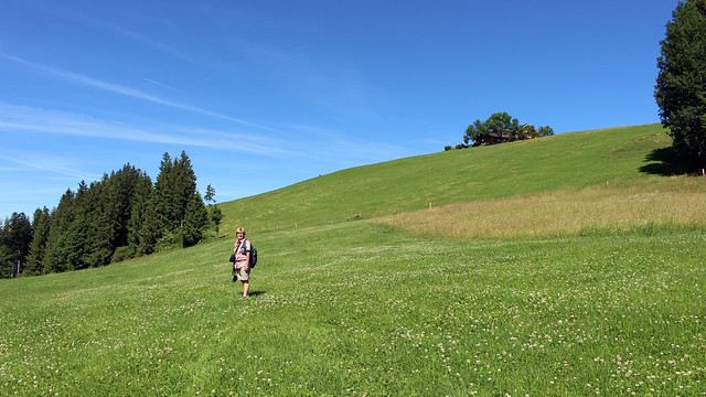Kurz vor dem Gipfel des Hoher Hirschberg