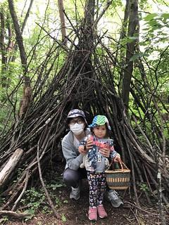 Forest adventure walk