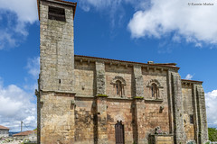 DSC4007 Fachada Sur, San Pedro da Mezquita, 1202, A Merca, Ourense