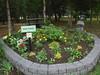 Silver springs gardens Calgary