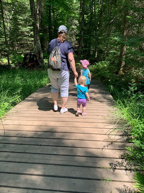 Family having a nice walk on a trail in Silent Lake Provincial Park , Martin's photographs , Bancroft , Ontario , Canada , July 5. 2021