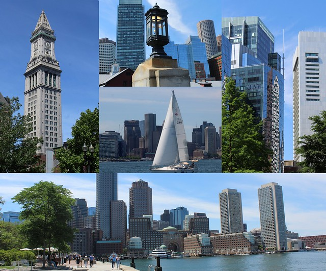 Boston Blue