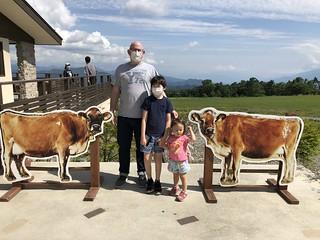 Seisen-ryo cows