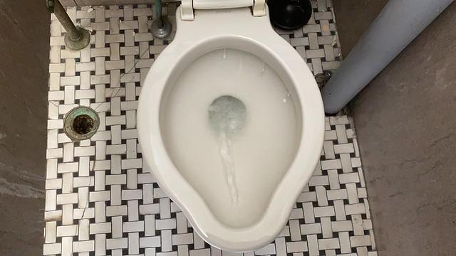 Vintage Kohler Devon extended lip toilet