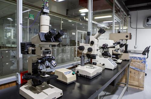 Laboratorio Ciencias de materiales