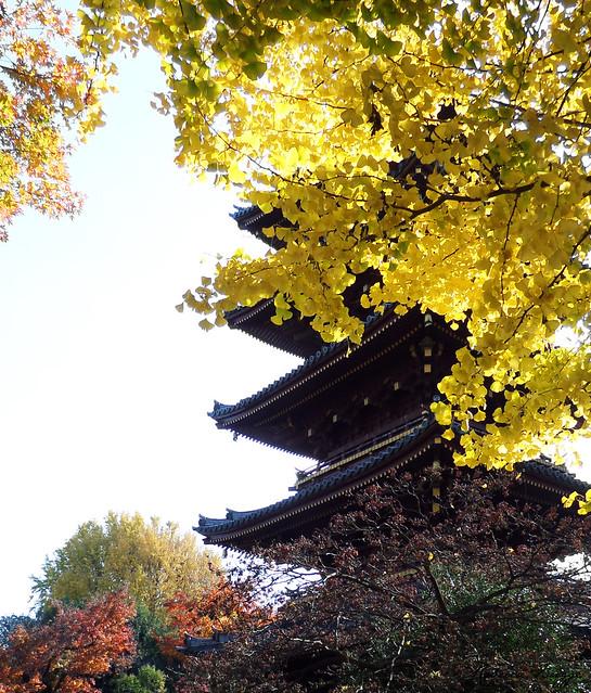 Autumn pagoda