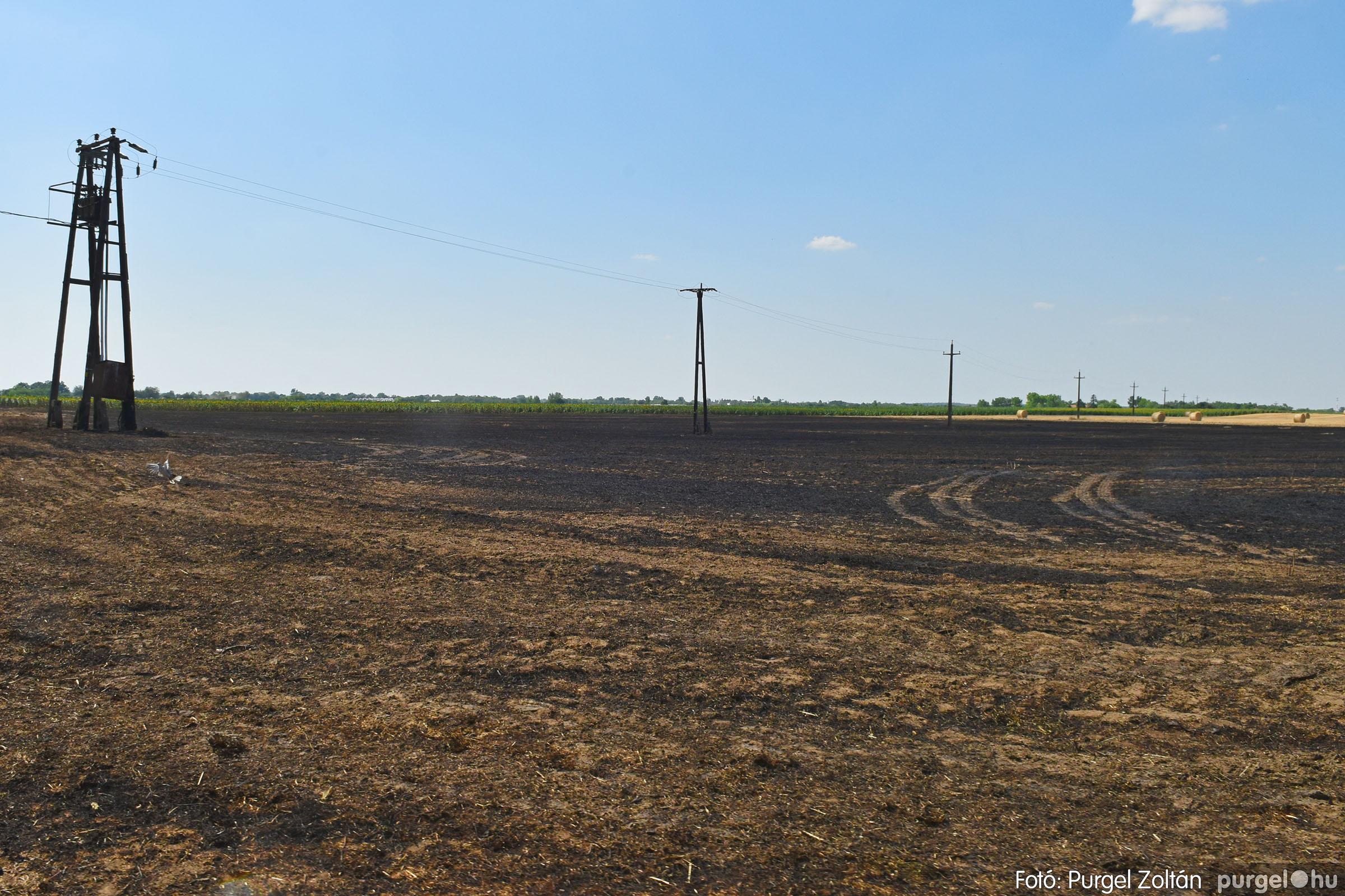 2021.07.08. 005 Égett a tarló a Grűner-telep közelében - Fotó:PURGEL ZOLTÁN© DSC_8061q.jpg