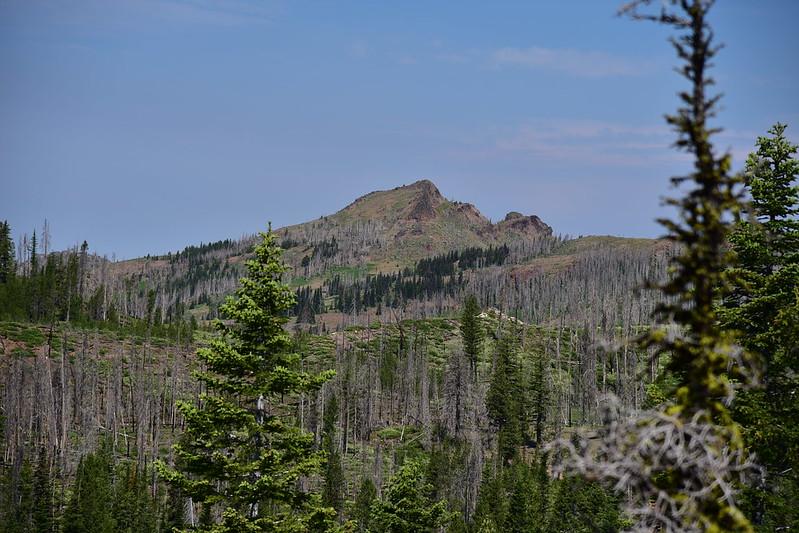 Wildcat Basin Hike